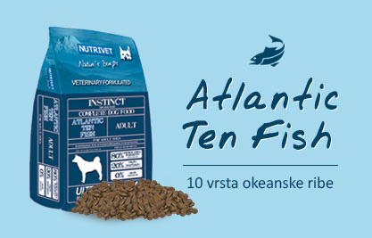 atlantic-ten-fish48.jpg