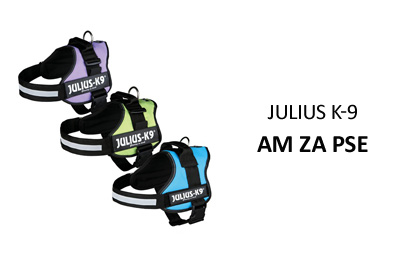 Julius K-9: Am za pse