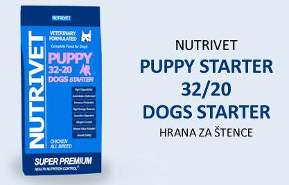 puppy-starter-32-20-dogs-starter8.jpg
