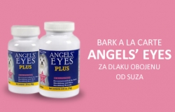 Bark A La Carte: ANGELS  EYES za dlaku obojenu od suza