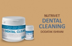 Nutrivet: Dental cleaning