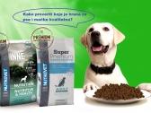 Kako da naučite da sami proverite koja je hrana za pse i mačke kvalitetna?