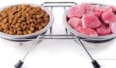 Znate li da ne možete da poredite cenu mesa i suve granule za ishranu pasa? (kalkulator ishrane pasa)