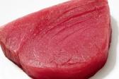 Uloga proteina u ishrani pasa