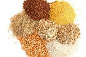 Ugljeni hidrati u hrani za kućne ljubimce